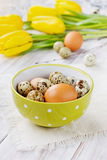 Easter table with chicken and quail eggs Royalty Free Stock Image