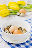 Easter table with chicken and quail eggs Stock Image