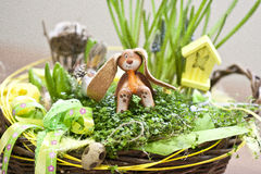 Easter table decoration. With rabbit and soleirolia and rbbons Stock Photos