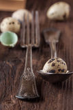 Easter table setting with quail eggs Stock Images
