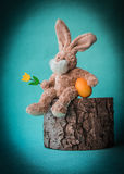 Easter teddy rabbit with tulip and egg sitting on the stump. Royalty Free Stock Photo