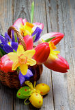 Easter Theme Stock Images