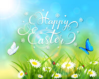 Easter theme with grass and flowers on blue background. Easter theme with a butterfly flying above the grass and flowers, nature background with sun beams and Stock Photography