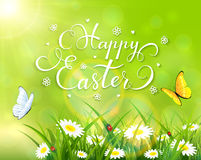 Easter theme with grass and flowers on green background. Easter theme with a butterfly flying above the grass and flowers, green nature background with sun beams Royalty Free Stock Photo