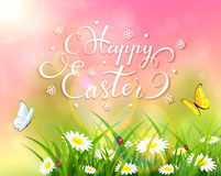 Easter theme with grass and flowers on pink background. Easter theme with a butterfly flying above the grass and flowers, pink nature background with sun beams Royalty Free Stock Photo