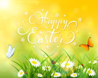 Easter theme with grass and flowers on yellow background. Easter theme with a butterfly flying above the grass and flowers, yellow nature background with sun Royalty Free Stock Photo