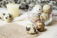 Easter theme, holiday decoration, candles, pussy willow and East. Er eggs of quail Stock Photography