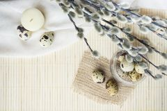 Easter theme, holiday decoration, candles, pussy willow and East. Er eggs of quail Royalty Free Stock Image