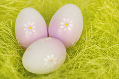Easter three Eggs on grass. Closeup Royalty Free Stock Photography