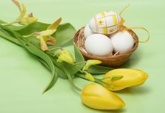 Easter time. Easter eggs with yellow tulip and orchid on green background royalty free stock image