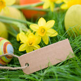 Easter time, label Royalty Free Stock Images