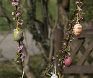 Easter tree in the garden Stock Photography