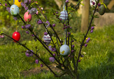 Easter tree in the garden Stock Photos