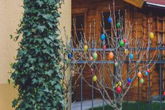 Easter Tree in Potsdam Stock Photos