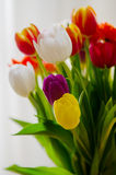 Easter Tulip Bouquet Royalty Free Stock Image