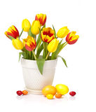 Easter tulip flowers. Spring tulip flowers in a white pot with easter eggs isolated on white royalty free stock photos
