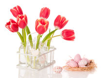 Easter Tulips Stock Photo
