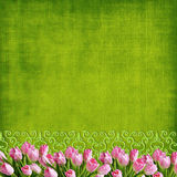 Easter tulips background. Pink tulips border over green background Stock Photography