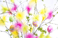 Easter Twigs with Coloured Feathers and Eggs Stock Photo