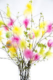 Easter Twigs with Coloured Feathers and Eggs. With white background royalty free stock images