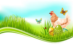 Easter vector template of paschal eggs and chicken Royalty Free Stock Image