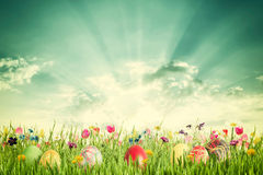Easter Vintage Background with Eggs and Flowers royalty free stock photo