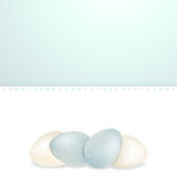 Easter white and blue speckled eggs and panel Royalty Free Stock Photo