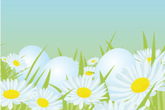 Easter white eggs Royalty Free Stock Photography