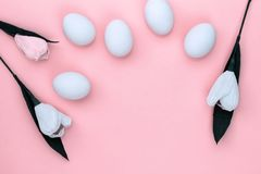 Easter white eggs and flowers tulips on pink background. From above, copy space, flat lay stock photography
