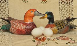 Easter white eggs next to duck on beige background stock images