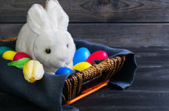 Easter white rabbit Stock Photography