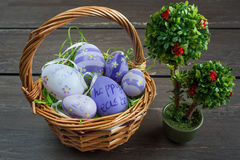 Easter wicker basket with colored eggs and a small bonsai on grey wooden board. Stock Photo