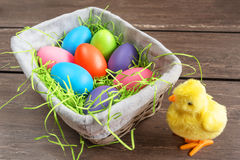 Easter wicker basket with colored eggs and a small chicken on grey wooden board. Royalty Free Stock Images