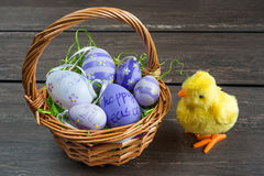 Easter wicker basket with colored eggs and a small chicken on grey wooden board. Royalty Free Stock Photography