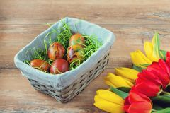 Easter wicker basket with colored eggs, yellow and red tulips on brown wooden board. stock images