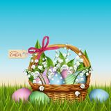 Easter wicker basket with flowers in grass Royalty Free Stock Photos