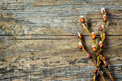 Easter - willow branches with catkins on vintage wood from above Royalty Free Stock Photos