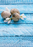 Easter wood background Royalty Free Stock Photo