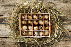 Easter wood background with box of eggs in nest Stock Photography