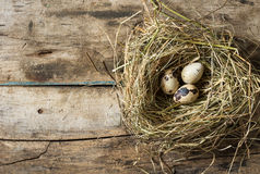 Easter wood background with nest and quail eggs Stock Photos