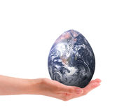 Easter World. The Easter Egg represented by miniature egg shaped Earth held in hand; isolated on white background Stock Images