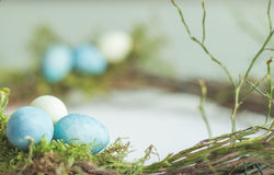 Easter. Wreath made from branches and moss with blue and yellow quail eggs royalty free stock images