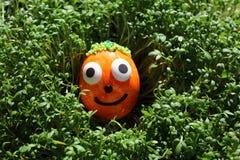 Easteregg divertente in crescione fotografia stock