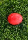 Easteregg on grass Stock Photography