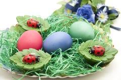 Easteregg and ladybirds Stock Photo