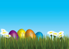 Eastereggs Foto de Stock Royalty Free