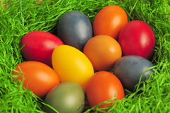 Eastereggs Royalty Free Stock Photos