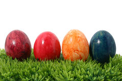 Eastereggs on grass Royalty Free Stock Images