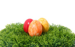 Eastereggs on grass Stock Photos