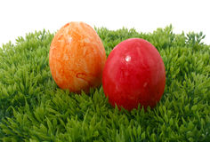 Eastereggs on grass Royalty Free Stock Image